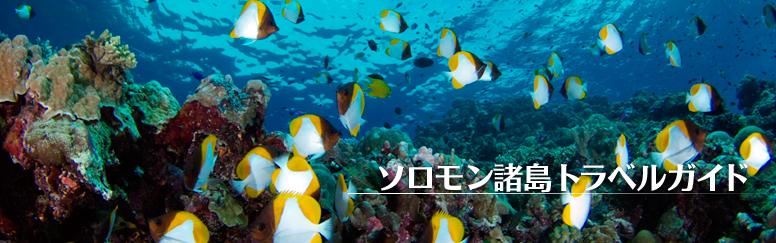 ソロモン諸島へのダイビングツアー、慰霊巡拝などの旅行情報